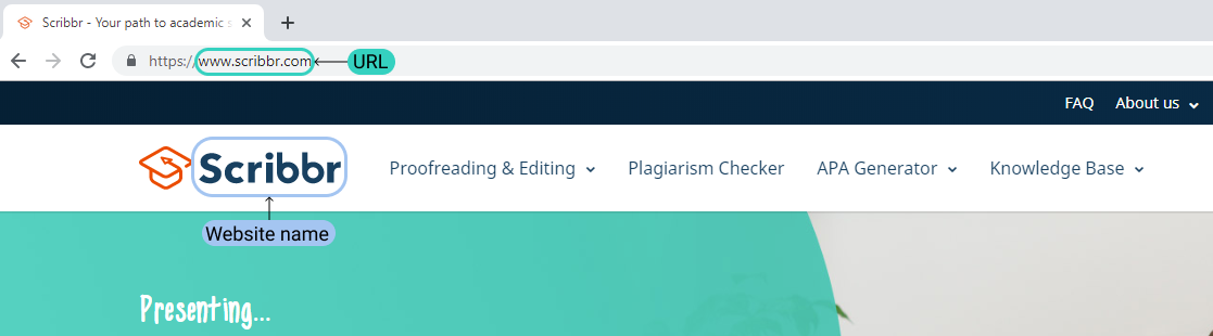 MLA website citation example