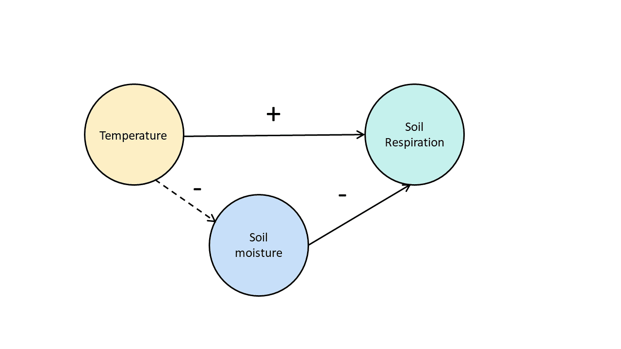 Diagram of the relationship between variables in a soil respiration experiment