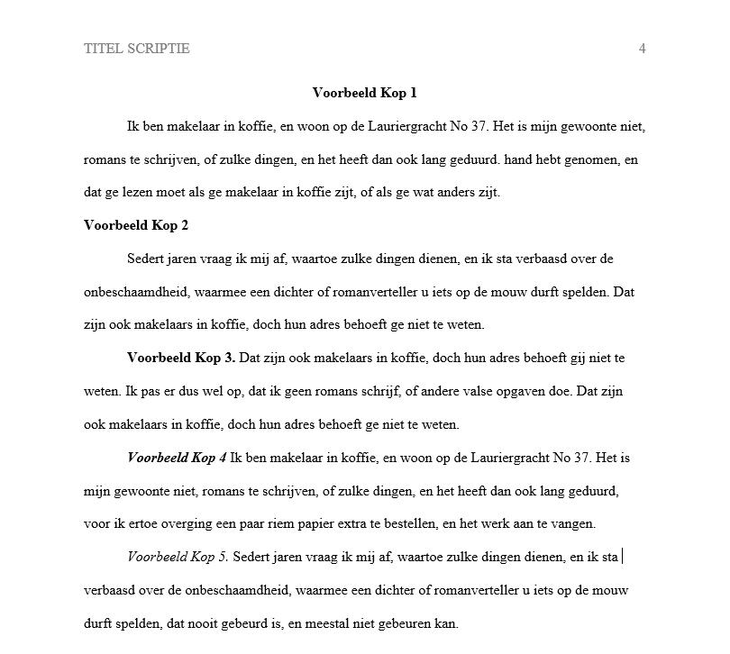 apa-voorbeeld-inhoudsopgave