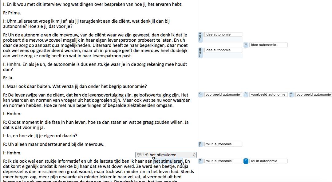 voorbeeld-gecodeerd-interview