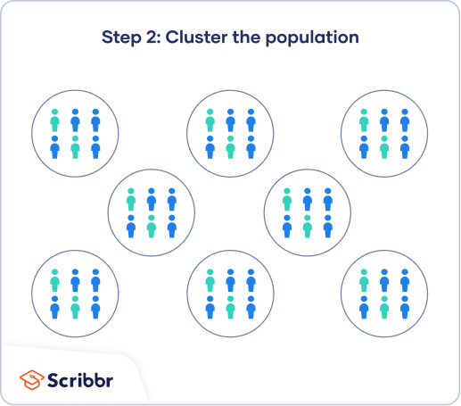 The second step of cluster sampling is to group the population into clusters, ideally representative of the population.